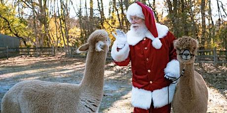 Furry Holiday Festivity with Santa at the Alpaca Farm tickets