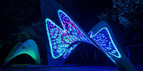 The Future of Light Festivals - LUTN Conference Session tickets