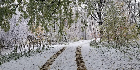 Downsview Park Jr. Forest Explorers: Winter Forest Secrets tickets
