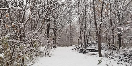 Downsview Park's A Walk in the Park: Want to Know about Snow? tickets