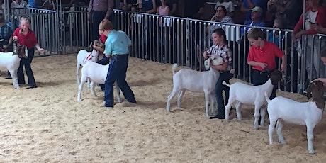 Currituck County Livestock Program Meeting tickets