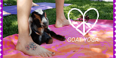 Goat Yoga with Wine & Cheese Tasting tickets