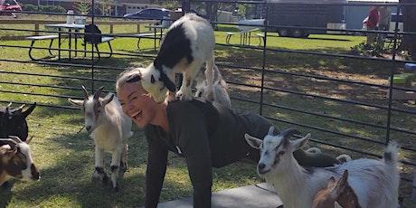 Holida-a-ay Goat Yoga! - Sun, Dec 13 @ 10am tickets
