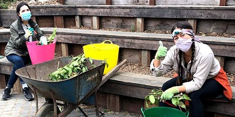 SOLD OUT: NEW! Online Urban Composting workshop tickets