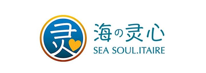 Soul Advance: Be a Soul Therapist (English Class) image
