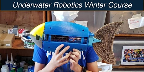 Underwater Robotics Winter Course @ PMQ tickets