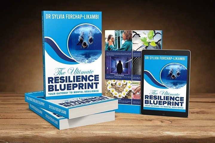 THE ULTIMATE RESILIENCE BLUEPRINT! image