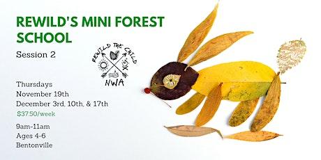 ReWild Mini Forest School Session 2