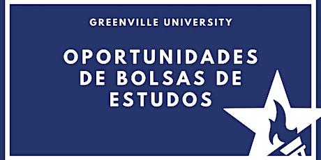 Oportunidades de bolsas de estudos com Greenville University ingressos