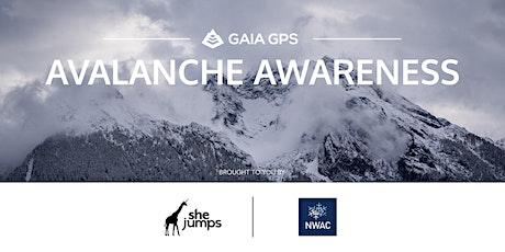 WA SheJumps Avalanche Awareness tickets