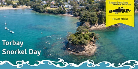 Torbay Snorkel Day tickets