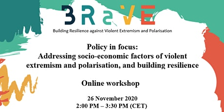 BRaVE Project: Policy in Focus Online Workshop tickets