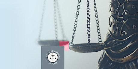 Seminario Virtual: Control judicial de la actividad estatal entradas