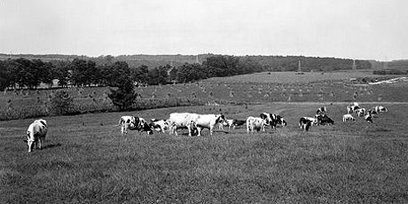 Hands-On History: Got Milk? Dairy Business on the Farm tickets