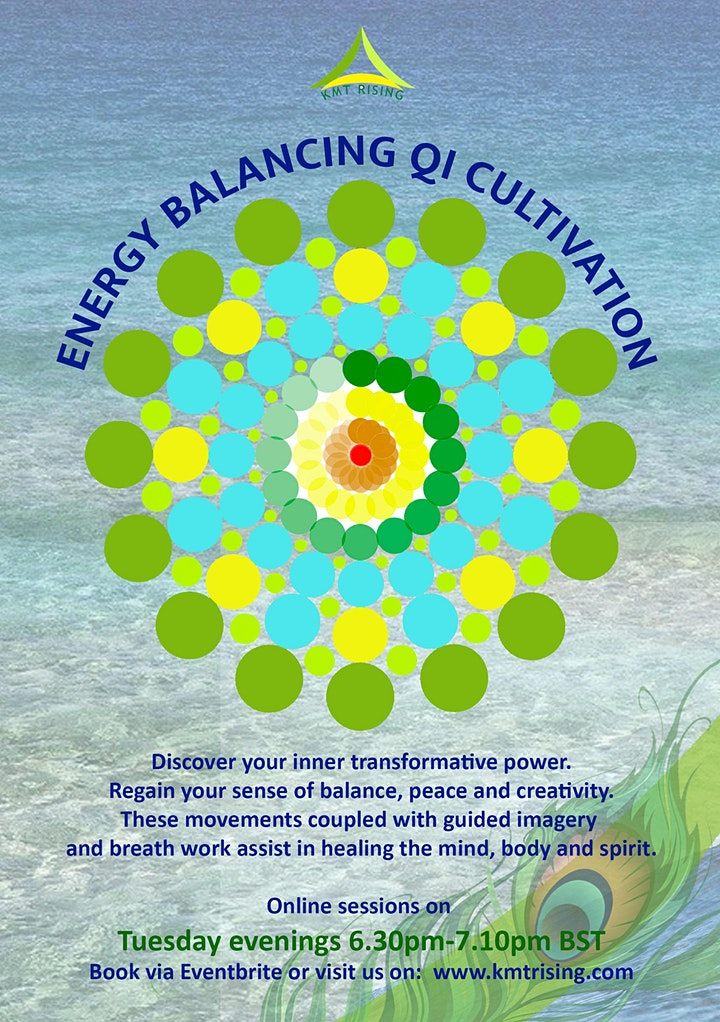Energy Balancing and Qi Cultivation Sessions image
