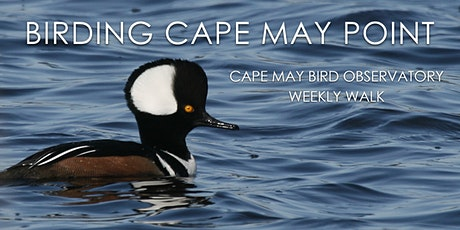 Birding Cape May Point tickets