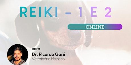Curso Online - Reiki Nível 1 - 05 de dezembro 2020 ingressos