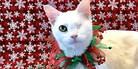 Happy Holidays at  Trueheart Haven by Milo's Sanctuary tickets