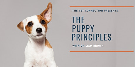 The Puppy Principles - Christmas Puppy! tickets