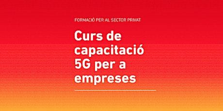 Curs de capacitació 5G per a empreses entradas