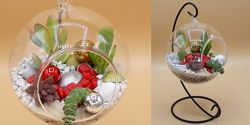 Festive Terrarium Takeaway Zoom Workshop