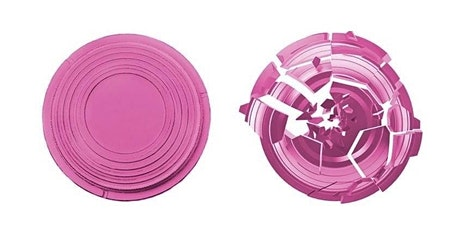 PiNK CLAYS  - TRY CLAY TARGET SHOOTING session tickets  - NBCF fundraiser tickets