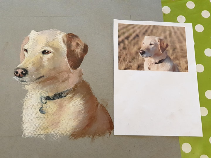 Pastel Animal Portrait for Beginners Class image