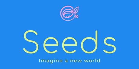 SEEDS Call To Action:  The first co-designed Doughnut Economics Game tickets