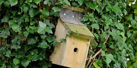 Wildlife Gardening -  Creating a Bird Box - Dukeries Complex - Community tickets