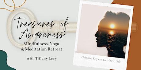 The Treasure of Awareness Retreat tickets
