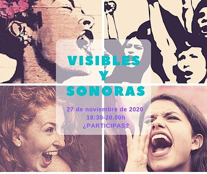 Imagen de Visibles y Sonoras