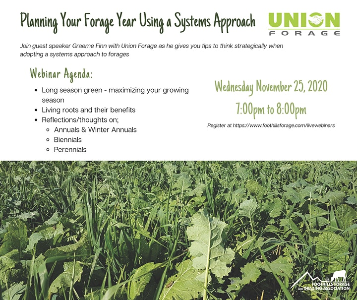 Planning Your Forage Year Using a Systems Approach image