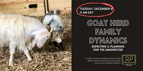 Goat Herd Family Dynamics: Expecting & Planning for the Unexpected tickets