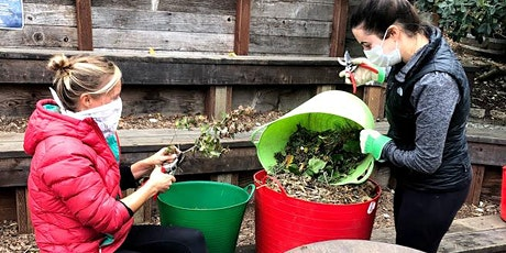 Online Urban Composting workshop (weekday evening offering!) tickets