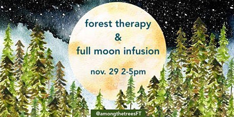 Forest Therapy & Full Moon Infusion tickets