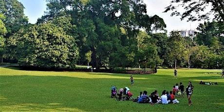 Singapore Botanic Gardens Stroll