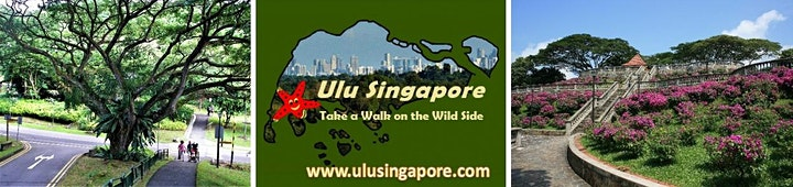 Scenic Singapore - The Southern Ridges image