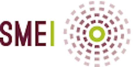 SMEI Virtual Series 3 tickets