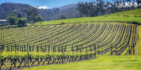 Huon Art & Wine Tour tickets