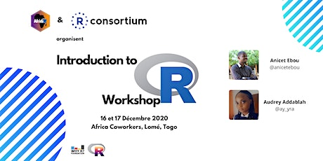 Introduction to R Workshop - Lome (Togo) billets