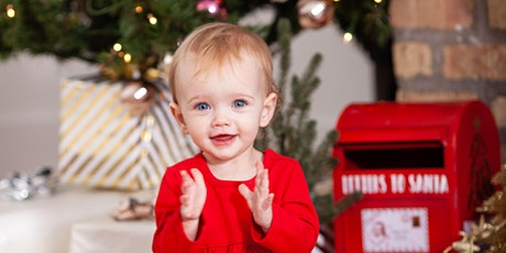 CHICAGO HOLIDAY MINI KIDS OR FAMILY PHOTOGRAPHY SESSIONS - NOV 29th tickets