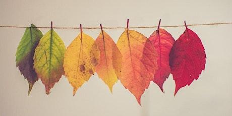 Autumn into Winter Reflection Webinar tickets