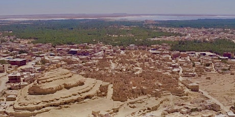 Protecting endangered heritage: From 3D Mapping to Environmental Monitoring tickets
