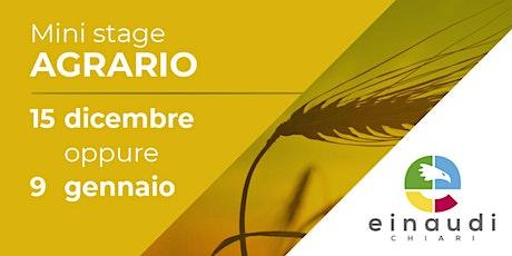 MiniStage in presenza - AGRARIO biglietti