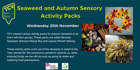 Seaweed and Autumn Sensory Activity Packs