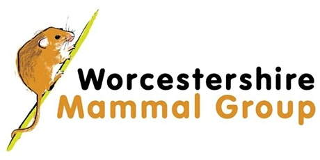 WMG Online Winter Talk - Pat Morris: Edible Dormice in England tickets