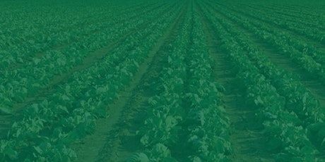 FFCRA Compliance Assistance:Farmworker Safety and Pay during the Pandemic tickets