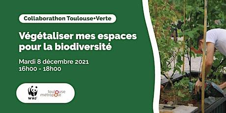Collaborathon Toulouse+Verte : Végétaliser mes espaces pour la biodiversité billets