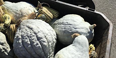 LGL Harvest Share: November 24 tickets