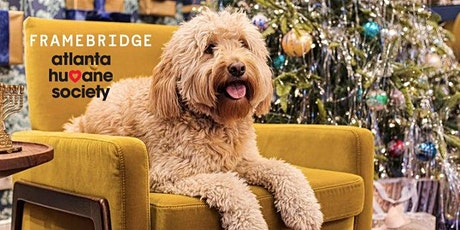 Holiday Pet Portraits with Framebridge tickets